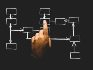 Youth Sports Organizational Structure